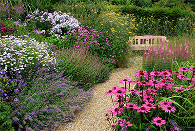 have-service - vedligeholdelse af haver, parker, grønne områder, Nordsjælland