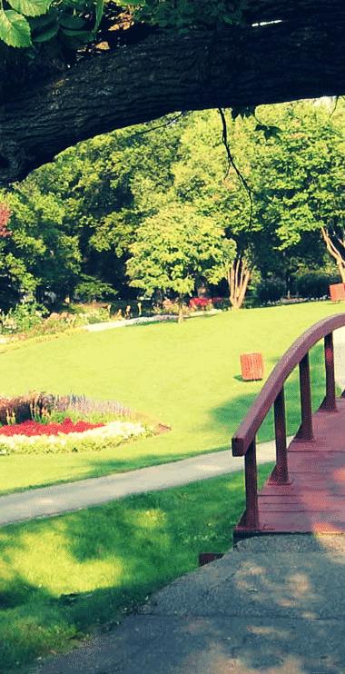 Vedligeholdelse af grønne områder, parker, udearealer
